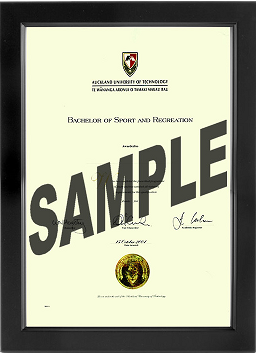 Certificate Frame with blue mat