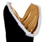 Resized Gold Hood